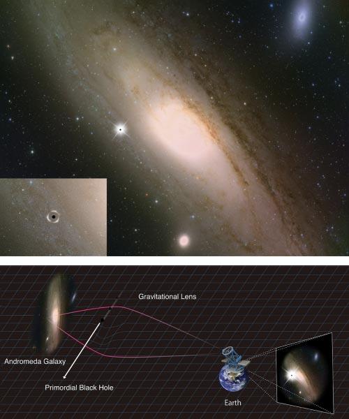 Andromeda galaxy a primordial black hole