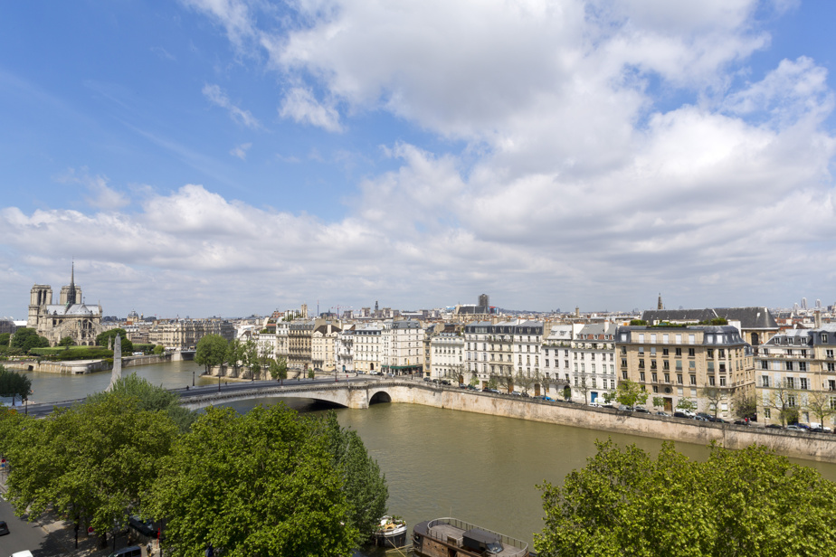 Paris, and especially Notre Dame, from the balcony of the Arab World Institute