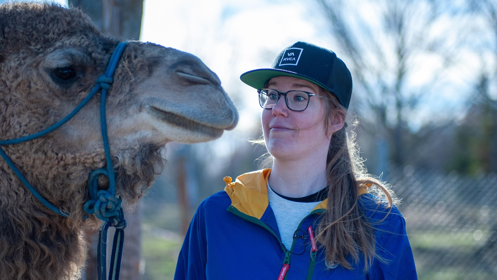 Llama-zing Adventures Company in Haute-Abujagane.  The owner, Jose Gutro, wears a purple coat.  Guide Monica Cormier wears a camouflage coat.  The person who wears the hat is called Annabelle Heber.  The company has a llama, emo and a camel.