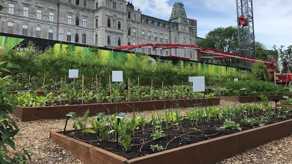 Gardens in front of the Parliament building in Quebec