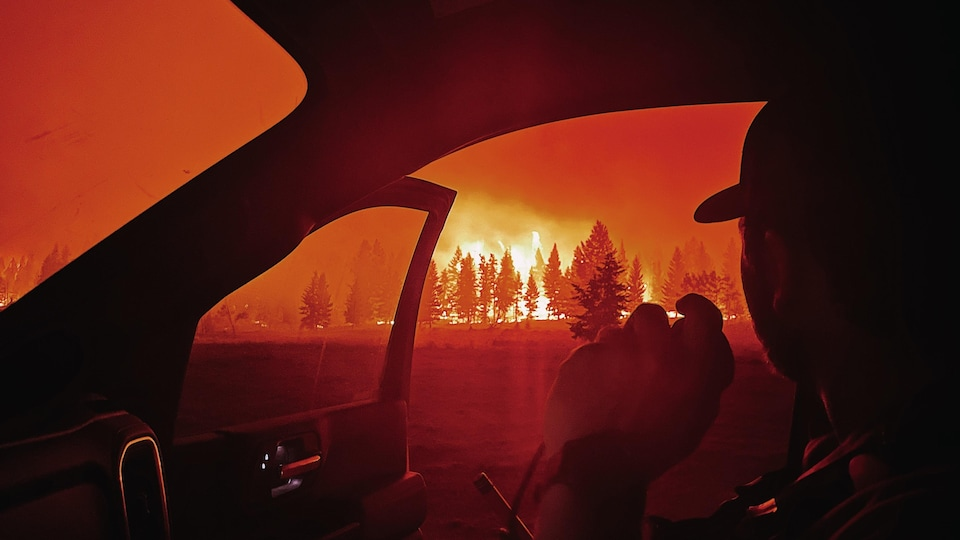 A firefighter watching burning trees from his car.