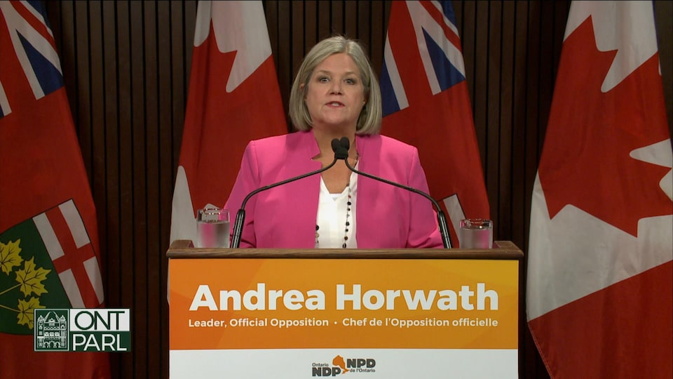 Andrea Horwath delivers a statement at a press conference in Queens Park.