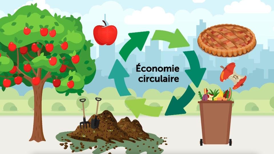 Diagram showing the circular economy.
