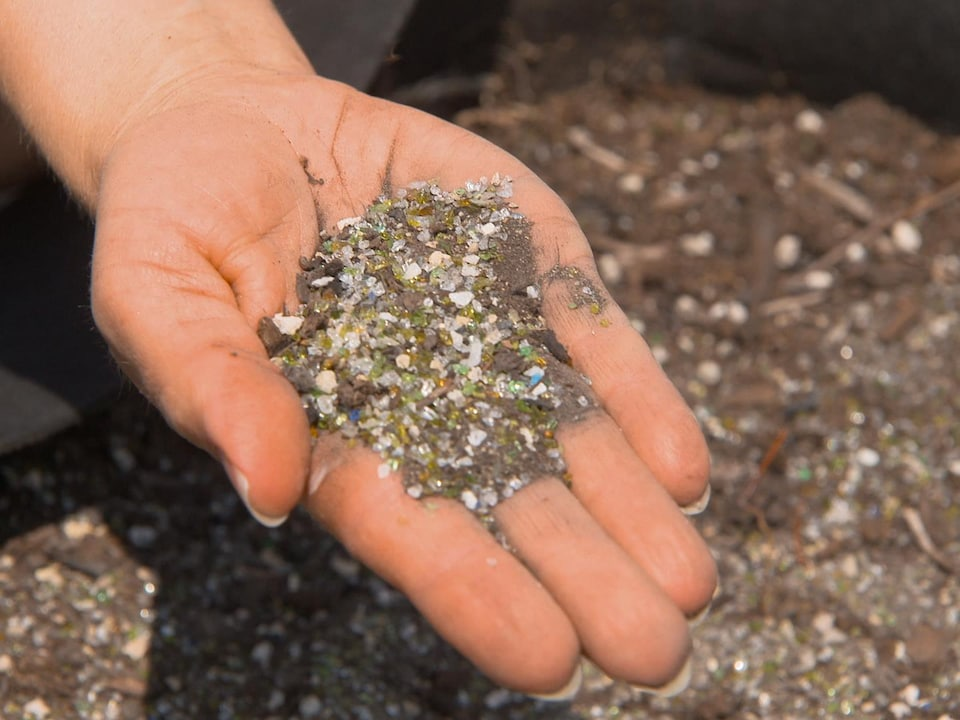 A woman holds in her hand a handful of cultivated soil.