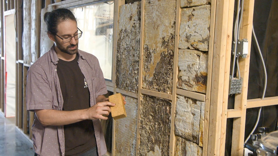 A man showing a brick made of mushrooms.